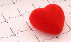immagine-cuore